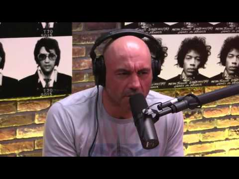 Joe Rogan & Will MacAskill on Consciousness, Cosmic Significance