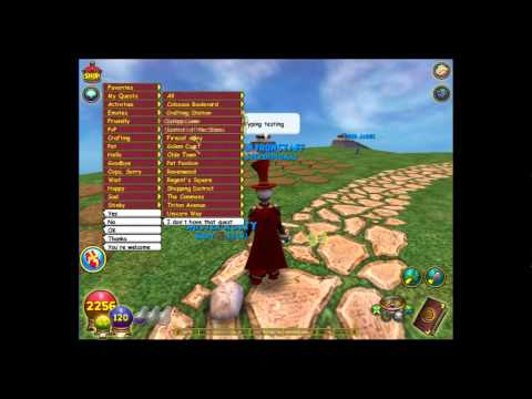 How To Use Wizard101 Chat
