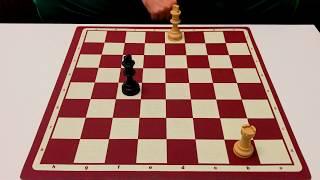 Kale Matı Nasıl Yapılır? Tek Kale ile Mat | Satranç Matları #3 Şah Kale & Şah