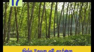 Video Sathara Digin song download MP3, 3GP, MP4, WEBM, AVI, FLV Oktober 2018