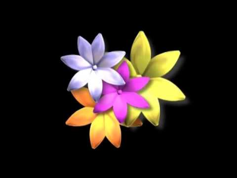Beautiful Flower Wallpaper Background Animated Hd Looping Free