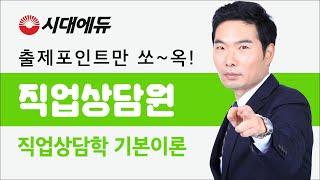 시대에듀 직업상담원 직업상담학 기본이론 01강 (김대환…