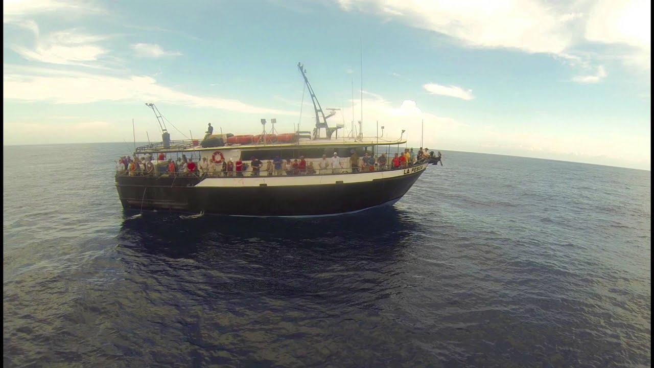Dolphin dock inc deep sea fishing youtube for Port aransas deep sea fishing