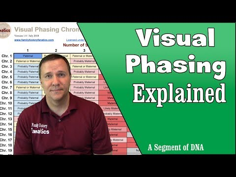Free Tool to Aid DNA Visual Phasing - Genetic Genealogy