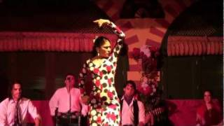 Flamenco Dance, Seville, Spain(Flamenco Dance Show during dinner at El Palacio Andaluz, Seville, Spain. The costumes, the dignified poise, the stomping footwork bedazzled us while we ate, ..., 2011-11-09T15:30:10.000Z)