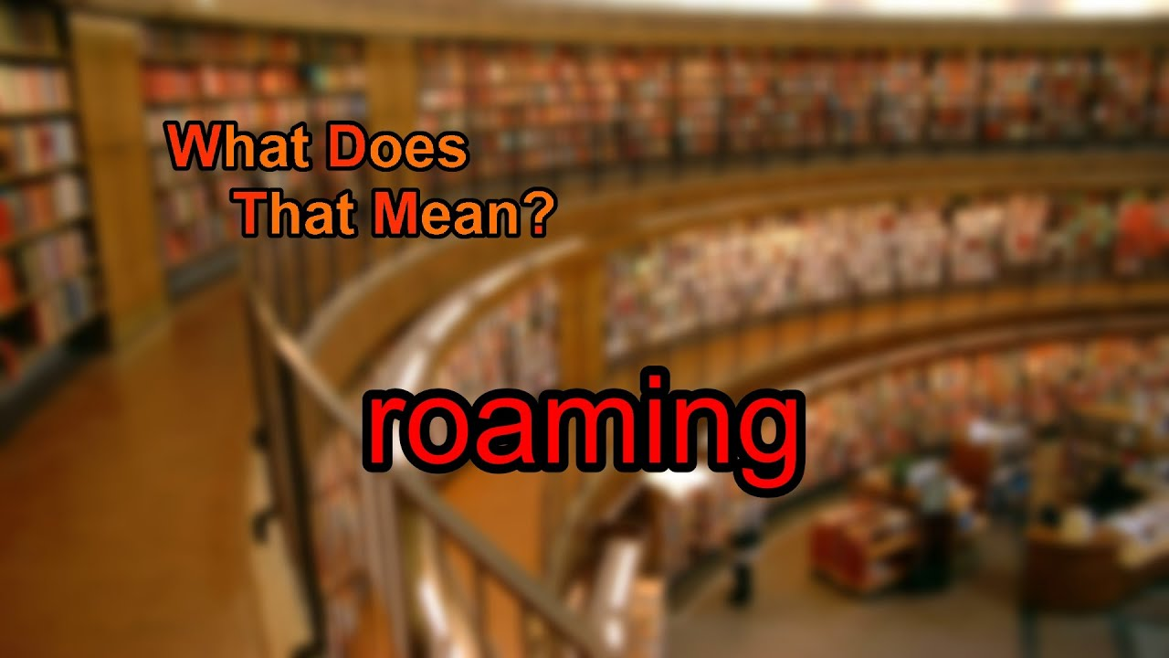 What does roaming mean?