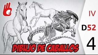 Dibujo de caballos, estudios del mundo natural. Desafío 52 nº4 - Dibujar Bien