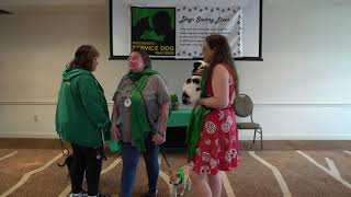 Service dogs can be small (Service dog skit lessons)