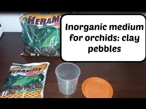 Inorganic Medium For Orchids: Clay Pebbles / L.E.C.A / Hydroton