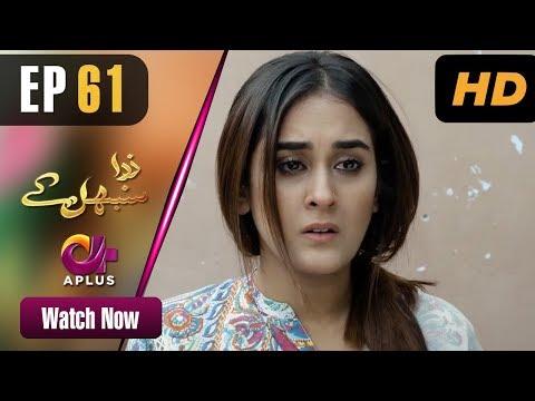 Zara Sambhal Kay - Episode 61 | Aplus | Bilal Qureshi, Danial, Shehzeen, Michelle | Pakistani Drama