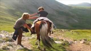 Horse Helps Autistic Kid