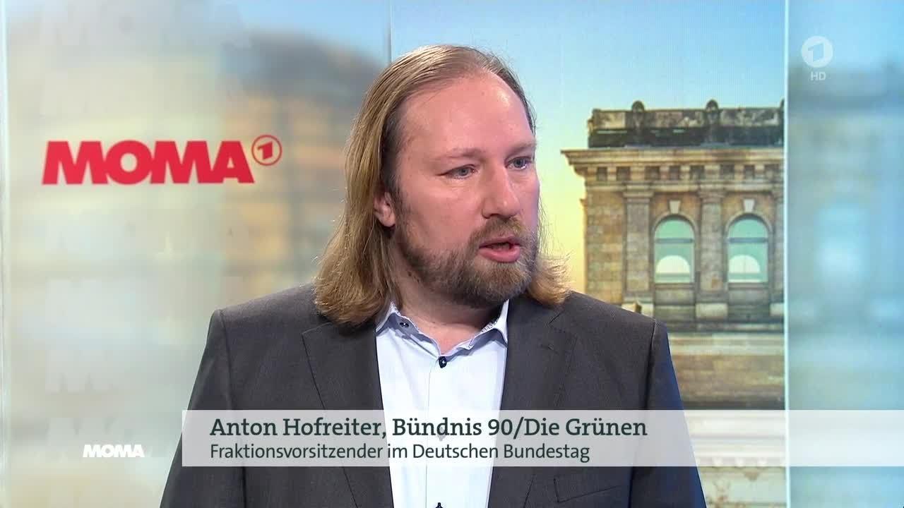 Anton Hofreiter zu Diesel Fahrverboten am 22 02 2018