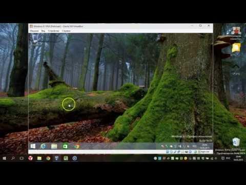 Как отключить обновления в Windows 8.1