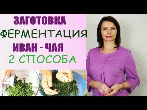 Заготовка и ферментация, сушка  ИВАН - ЧАЯ в домашних условиях (2 способа).Как Сушить кипрей?