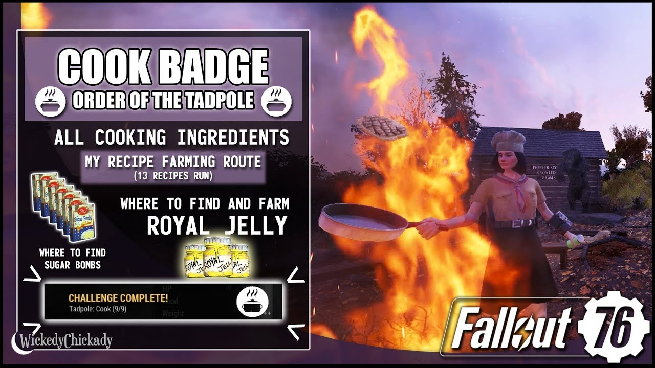 Cook Badge Fallout 76 | Order of the Tadpole | Farm Royal Jelly & Sugar  Bombs | Fallout 76 Backpack