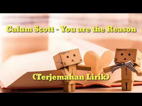 Calum Scott - You Are The Reason (Terjemahan Lirik)