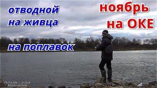 Рыбалка на ОКЕ в НОЯБРЕ 2020 Отводной на живца на ПОПЛАВОК