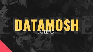 Datamosh Tutorial: эффект поврежденного цифрового видео