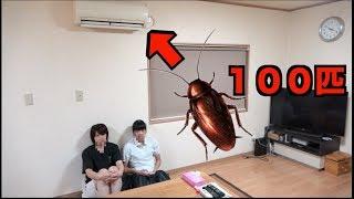 エアコンにゴキブリ100匹詰めたら妹は... thumbnail