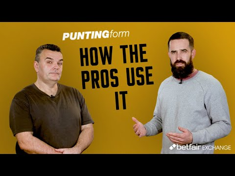 Horse Racing Tips: How The Pros Use Punting Form