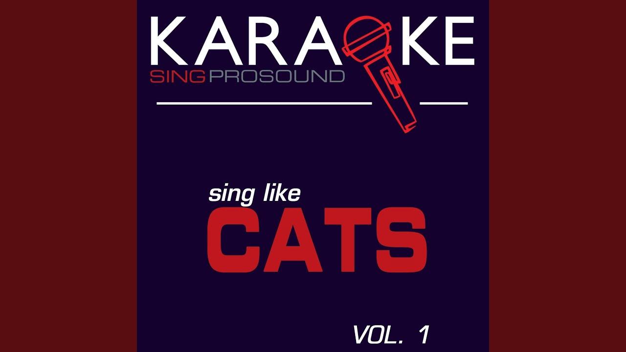 Jellicle cats the jellicle ball karaoke lead vocal demo youtube jellicle cats the jellicle ball karaoke lead vocal demo stopboris Images