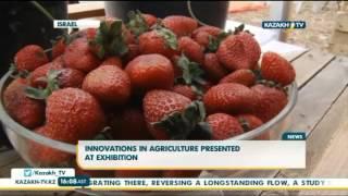 Инновации в сельском хозяйстве представили на агровыставке в Израиле - Kazakh TV