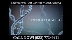 Commercial Pest Control Wilhoit Arizona