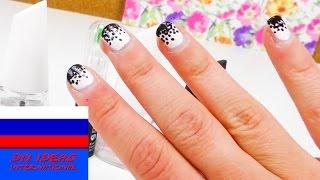 Дизайн ногтей маникюр рисунок с точками