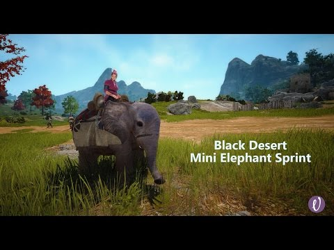 Black Desert Miniature Elephant with Quick Run Sprint