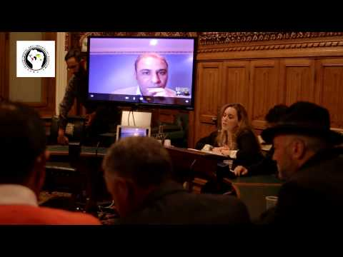 Hafsa Kara addresses anti-Nato Libya event in British Parliament
