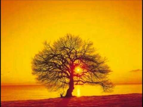 Two Sunsets Due Tramonti Ludovico Einaudi