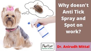 Anti Tick Spot On & Sprays - Use it correctly - By Dr. Anirudh Mittal | Pupkitt Pet Care