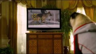 Le Chihuahua de Beverly Hills 2 - le 7 février 2011 en Blu-ray, DVD et VOD