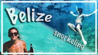 BEST BELIZE SNORKELING - San Pedro Belize Vlog (Ambergris Caye)