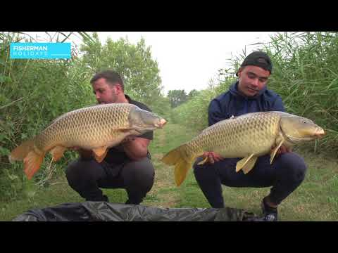 Etang du Moulin - Carp fishing holidays in France