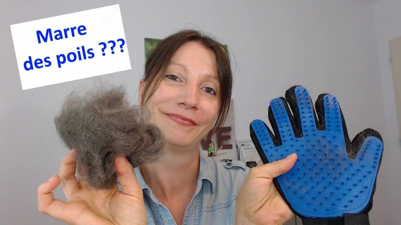 gant magique pour enlever les poils des chats et des chiens code promo youtube. Black Bedroom Furniture Sets. Home Design Ideas