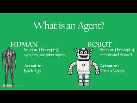 Understanding Artificially Intelligent Agents