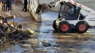 Limpieza del arroyo La Cañada en Córdoba