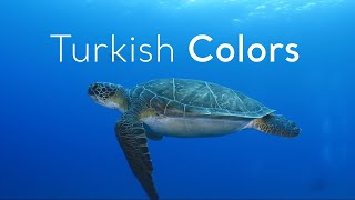 Turkish Colors ReTurkey