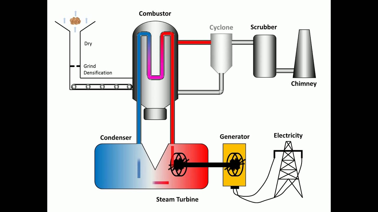 How Does Biomass Combustion Work ~ Process of combustion youtube