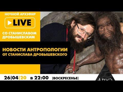 Ночной АРХЭфир «Новости антропологии от Станислава Дробышевского»