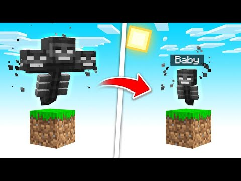 How To TURN The WITHER Into A BABY in Minecraft!