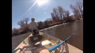 Early Spring Fly Fishing With Crested Butte Angler: Gunnison,CO 2013