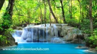 Binaural Sounds Nature Music Beat: Water Stream, Rain, Birds and Tibetan Bells