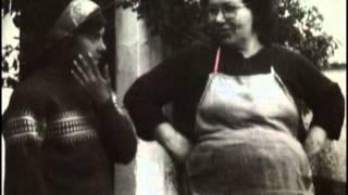 Amigos del Cerro Hierro - El ultimo guateque