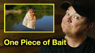 17 Catfish From One Piece of Catfish Bait