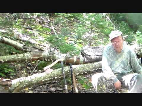 Adirondack Bear Hunt With Alonzo Selden Rifle And Blunderbuss
