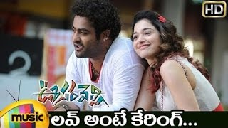Gambar cover Love Ante Caring Telugu Video Song | Oosaravelli Telugu Movie Video Songs | Jr NTR | Tamanna | DSP