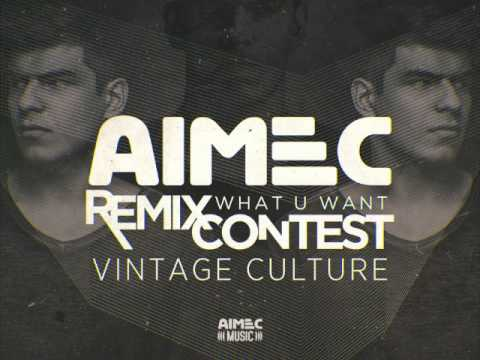 Vintage Culture - What u Want (Nape & Chagas Remix)