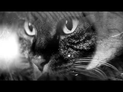 Клип The Black Angels - Manipulation